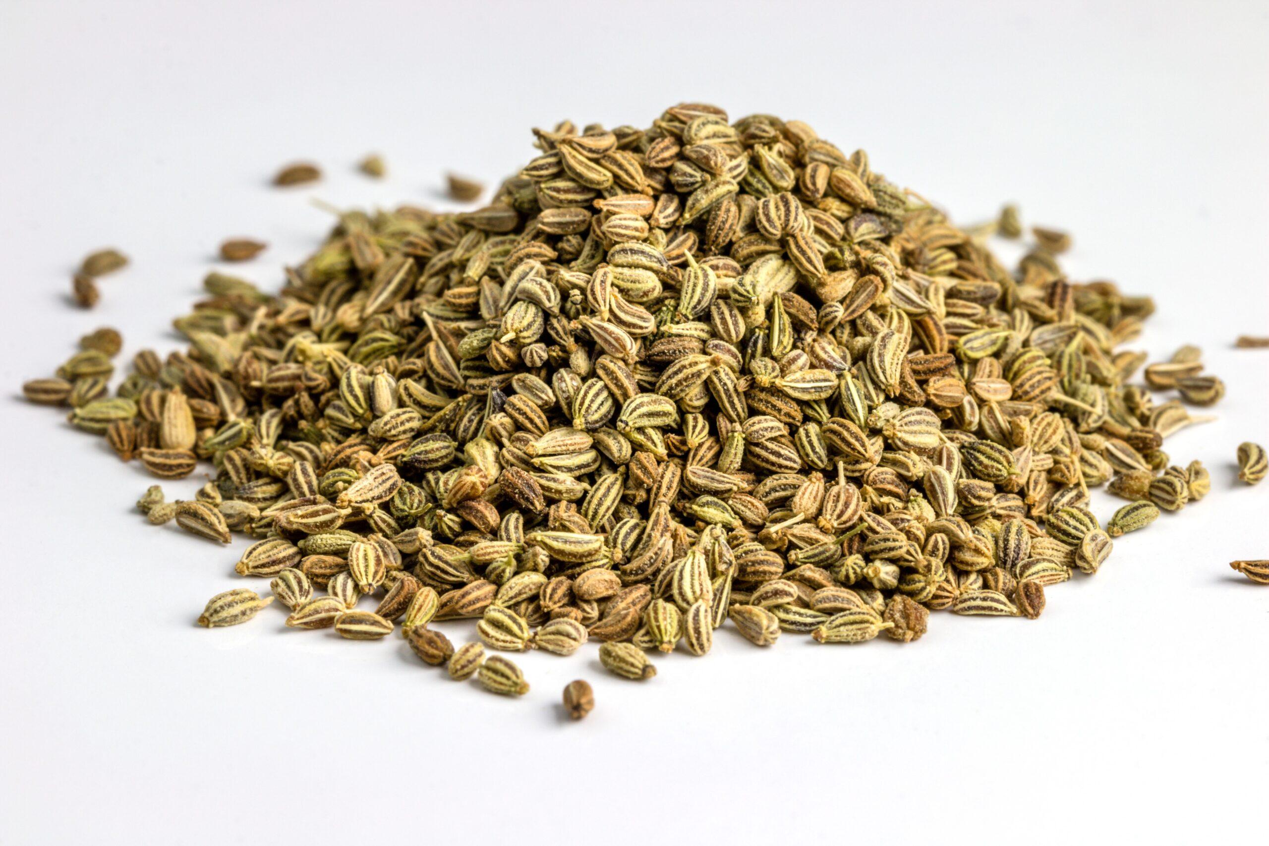 Esenciální olej Ajowan (Koptský kmín) - průvodce Byliny&Tradice
